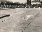 Gare di nuoto nella piscina aziendale.
