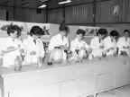 Scuola Tecnica Enrico Rocca. Allieve. 1966