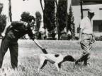 Partecipante alla gara di caccia con cane.